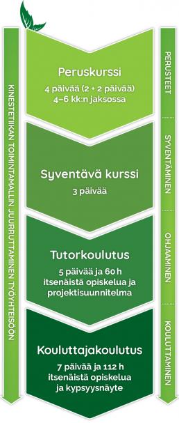 Piirroskuva kinestetiikan oppimisjatkumosta: peruskurssi, syventävä kurssi, tutorkoulutus ja kouluttajakoulutus.